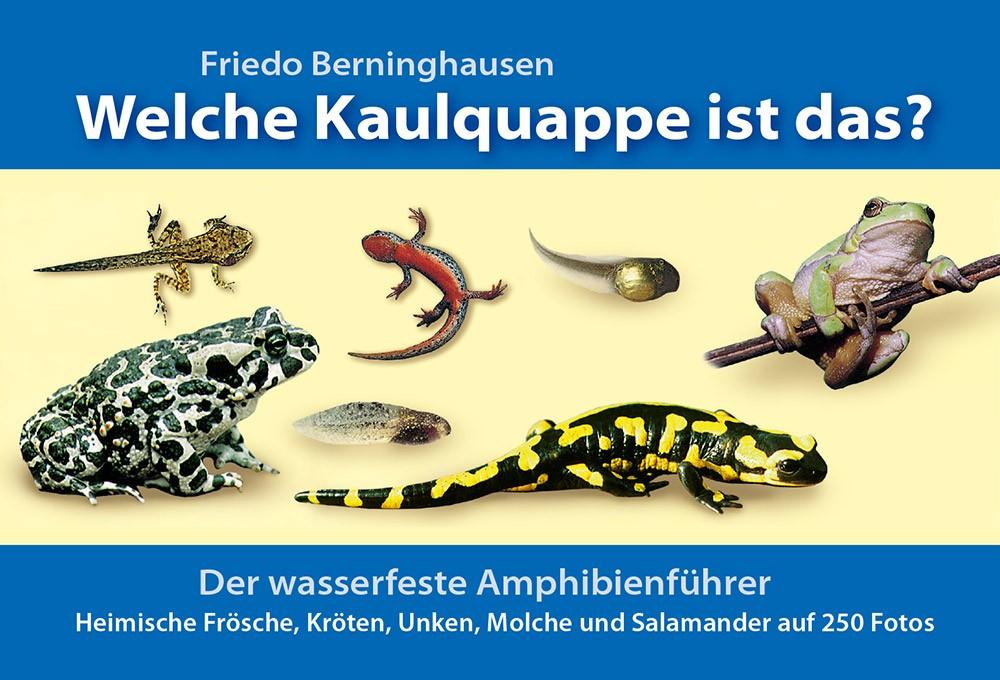 amphibienfuehrer_1000